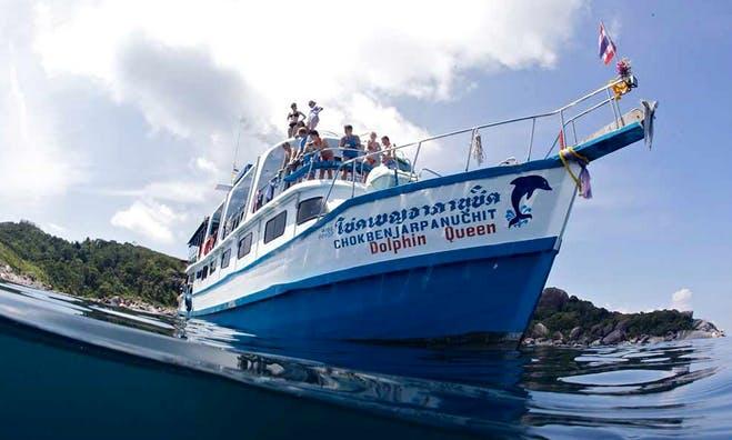 Multiple Day Diving Charter Dolphin Queen in Tambon Khuekkhak