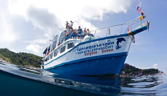 Multiple Day Diving Charter Dolphin Queen In Tambon Khuekkhak