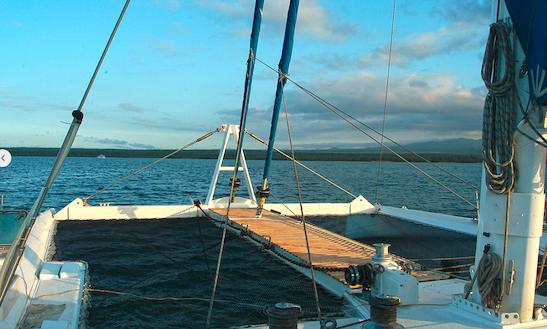 83' Cruising Catamaran Nemo I Charter In Puerto Ayora