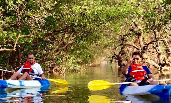 Kayak Tours On Nerul River