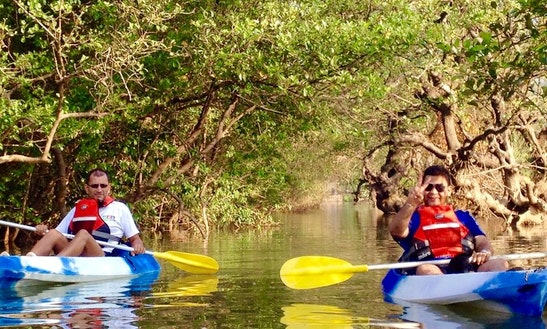 Kayak Tours On Nerul River