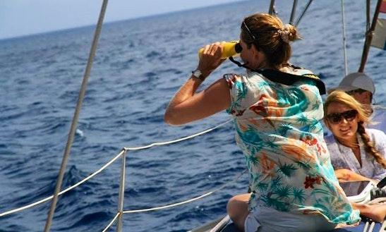 Cruise Spain On Luxury Monohull Bavaria 38