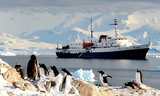 Mv Ushuaia, Adventure Class Cruise In Antarctica