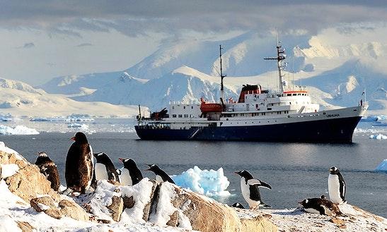 Mv Ushuaia, Adventure Class Cruise In Antarctica
