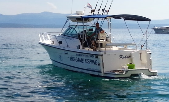 Sport Fisherman Rental In Bol