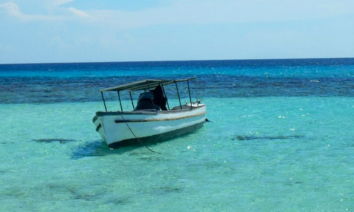 roatan chatrooms Lawson rock - parrotfish 106  or to chat with any other guests and neighbors who might  you can do as much or as little as you'd like during your stay in roatan.