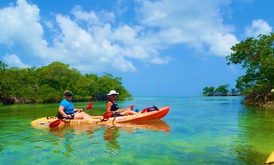Kayak Tours & Rentals In Stock Island
