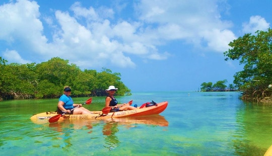 Kayak Tours And Rentals In Stock Island