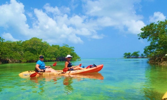 Kayak Tours & Rentals In Stock Island