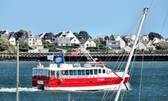 Guided Cruise Of The Rade De Lorient In France