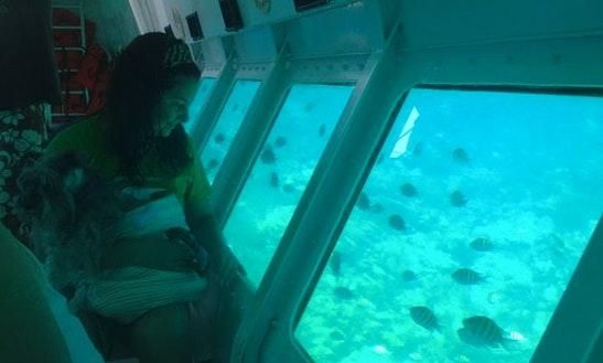 Glass Bottom Boat Tour In Honduras