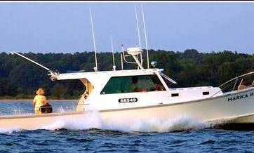 "42' ""Marica II"" Sport Fisherman In Ridge, Maryland United States"