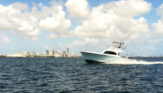 Sport Fisherman Charter In Miami Beach