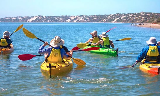 Single Or Double Kayak Rental In Goolwa