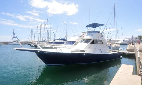 Fishing Charter on Striker 38 Sportfishing Yacht in Canary Island