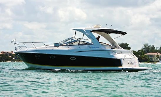 2006 Regal Motor Yacht Charter In Siesta Key, Florida