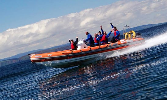 25' Rib Charter Privateer In Findhorn, Uk