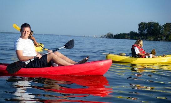 Dolphin & Manatee Kayak Tour In Merritt Island