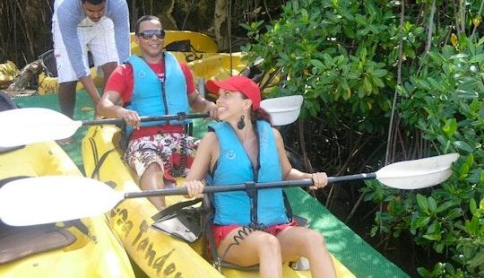 Aruba's First And Only Kayak Tour