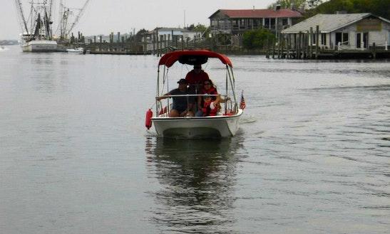 Boston Whaler Montauk 17' In North Carolina