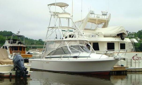 Fishing On 29' Blackfin Yacht In New Castle, New Hampshire