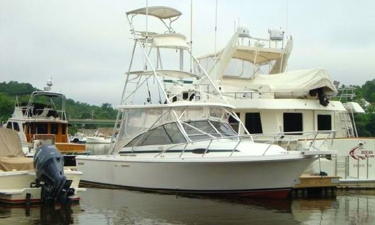 Enjoy Fishing On 29' Blackfin Yacht In New Castle, New Hampshire
