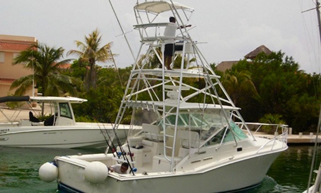 35 39 sport fisherman charter in playa del carmen mexico for Playa del carmen fishing charters