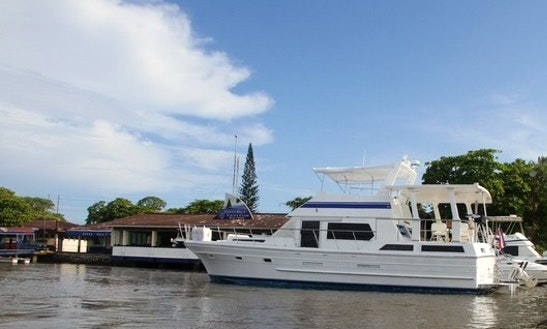 55' Navigator Fishing Charter In Jaco