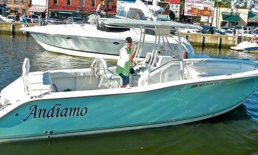"27' ""Andiamo"" Sport Fisherman In Stevensville, Maryland United States"