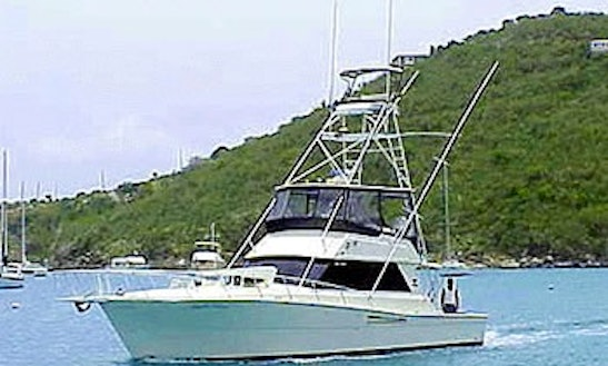 Marlin Prince Sport Fishing In St Thomas