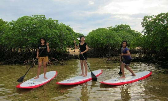 Stand Up Paddleboard In Lembongan Island
