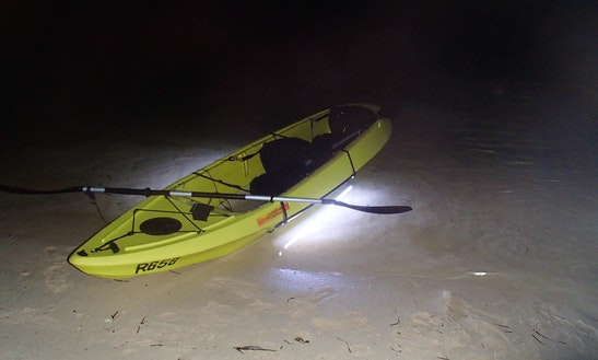 Guided Kayak Tour In Bermuda