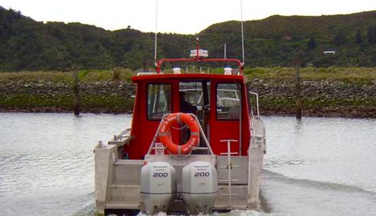 Miss Te Rawa Dolphin Sightseeing Charter In Marlborough Sounds