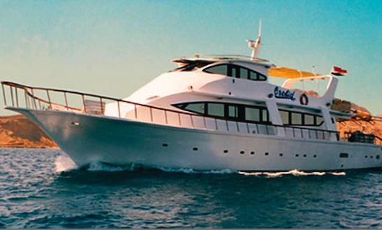 Ras Mohamed Boat Trip On Mega Yacht