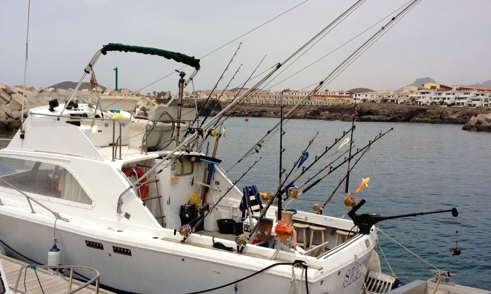 Sport Fisherman Rental in Miguel de Abona