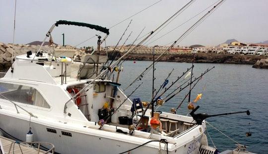 Sport Fisherman Rental In Miguel De Abona
