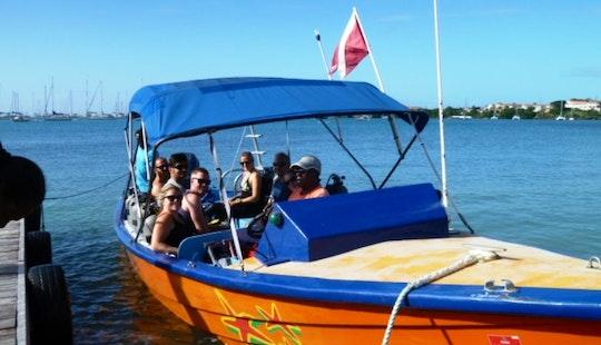 Passenger Boat Rental In Saint George's