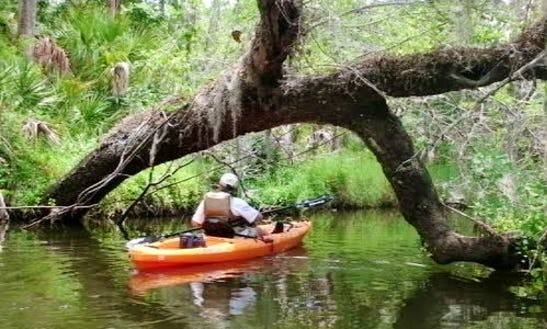 Tandem Kayak Rentals In Palm Bay, Florida