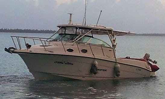 Fishing Charters On 32ft Seaswirl Striper Boat In Vieques, Puerto Rico