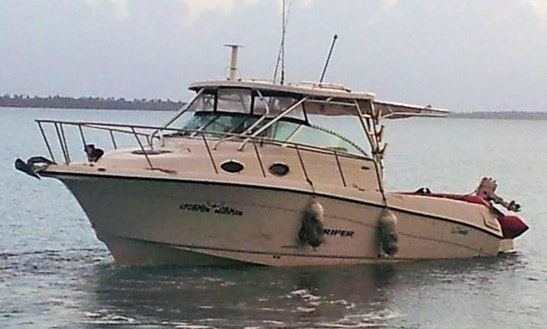 Fishing charters in vieques for Puerto rico fishing charters
