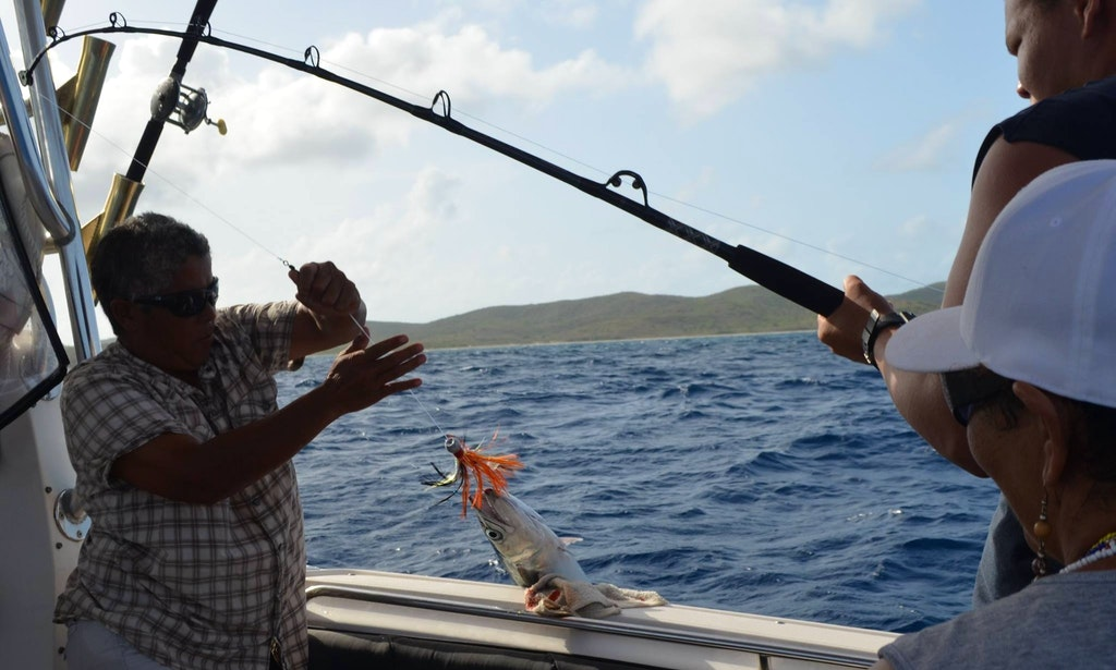 Fishing charters on 32ft seaswirl striper boat in vieques for Puerto rico fishing charters