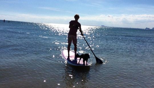 Fantastic Way To Enjoy Key Biscayne, Florida  - Rent A Sup