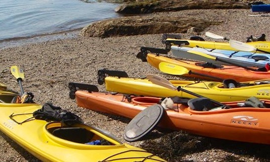 Kayak Rental In Maine