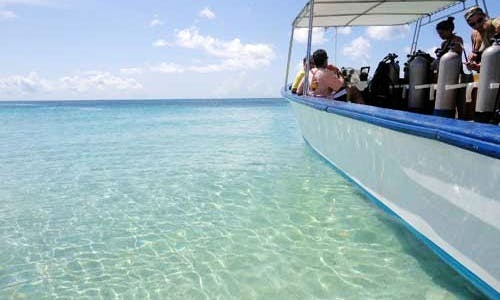 Dive Charters in Grenada