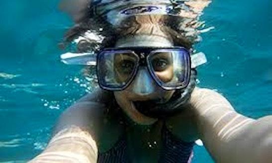 2 Site Snorkeling Trip In Grenada