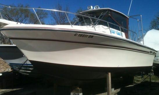28ft Proline Coastal Sportfisherman Boat Fishing Charter With Captain Dave In Lake Ontario, Canada