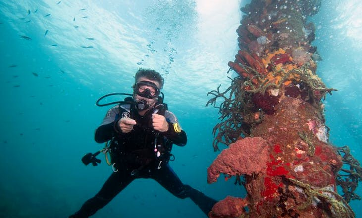 Diving and Snorkeling Charter in Dominica
