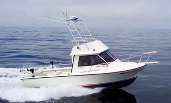 30ft Motor Yacht Fishing Charter With Captain Jimmy In San Francisco, California
