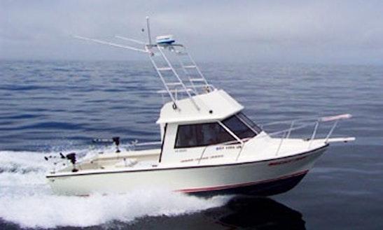 Private san francisco bay boat cruises wine tasting for Motor boat rental san francisco
