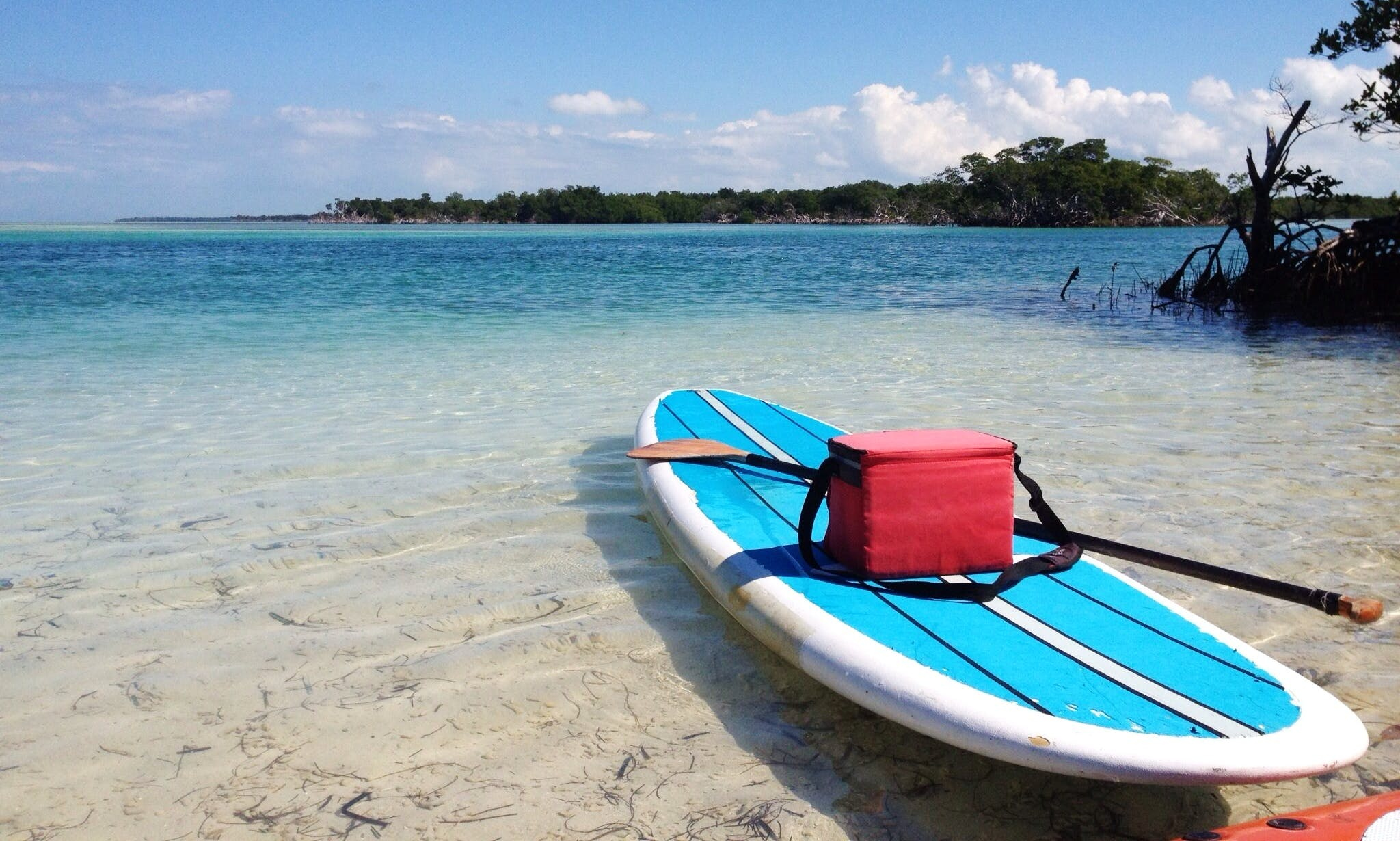 SUP Paddleboard Lessons & Tours in Key West